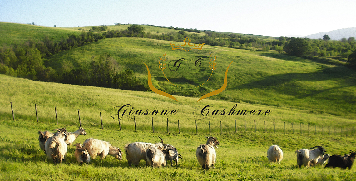capre-cashmere